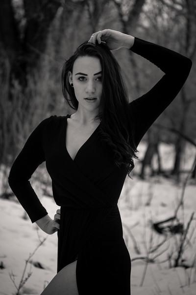 dark-woods-850755