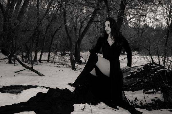 dark-woods-850833