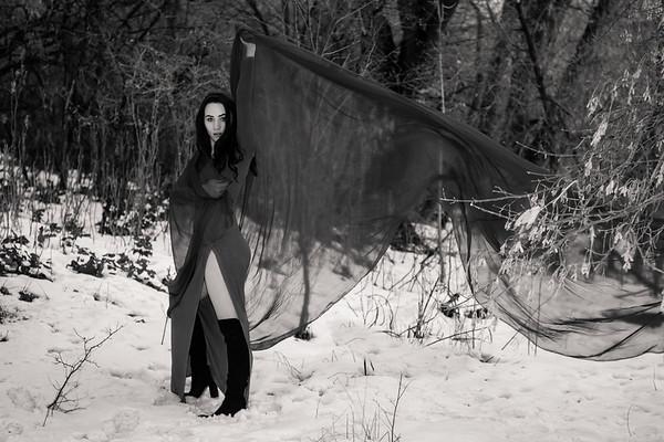 dark-woods-850651