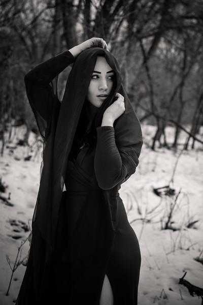 dark-woods-850688