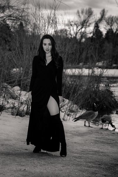 dark-woods-850861