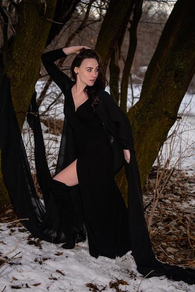 dark-woods-850776