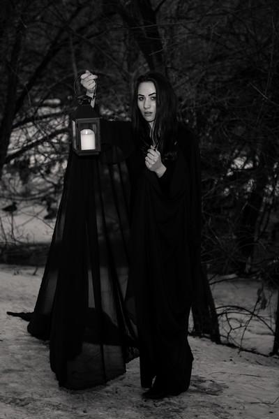 dark-woods-850879