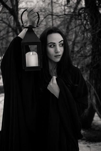 dark-woods-850899
