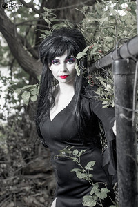 TJP-1262-Elvira-2025-Edit
