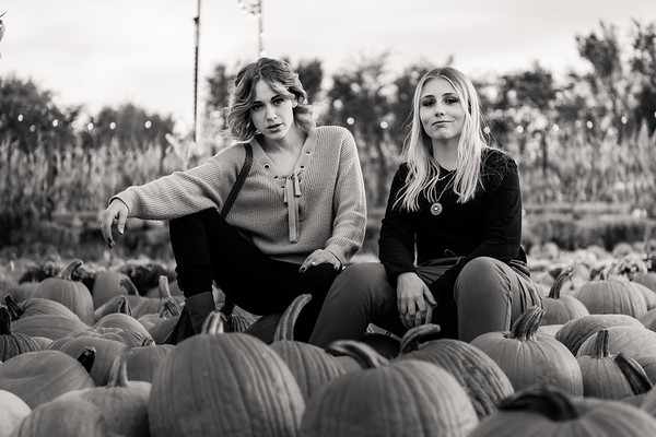 pumpkin-patch-853112