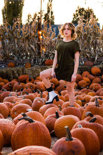pumpkin-patch-853248