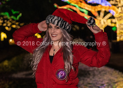 12/03/2018 MERRY CHRISTMAS WITH KATE @lebaneseblondchick @houstonzoo