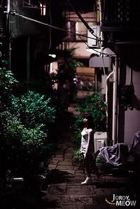 Miki in Shitamachi