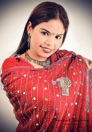 The Indian Saree- Zari..