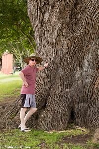 Tree Dwarf's Man