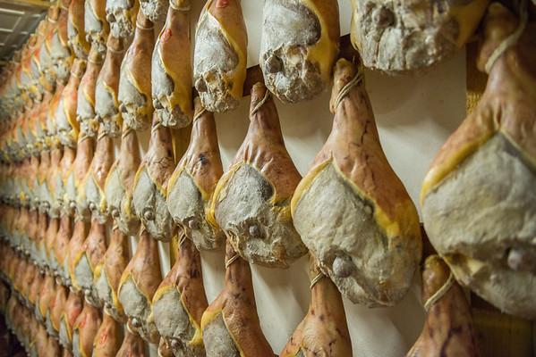 Rows of Prosciutto di Modena hanging to age