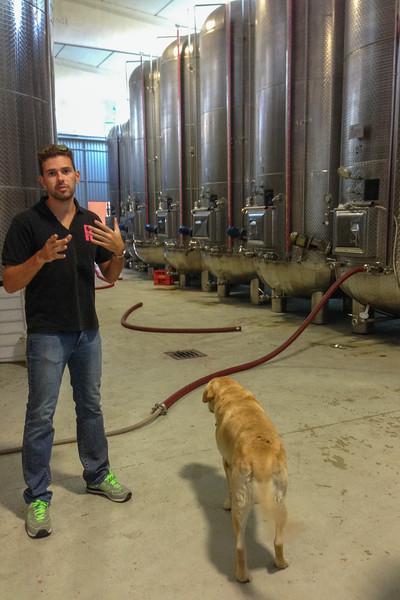The winemaker and his dog -- Garuti Winery