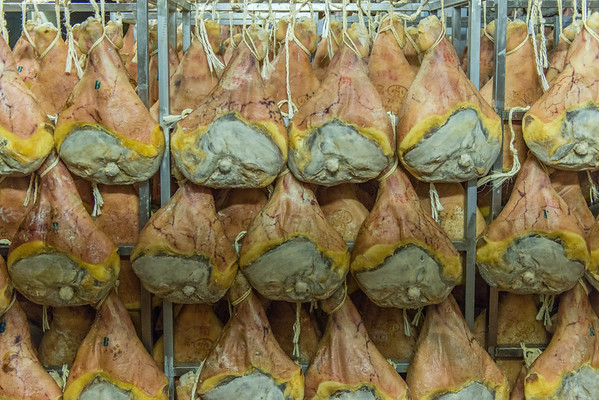 Rows of Prosciutto di Modena hanging to age