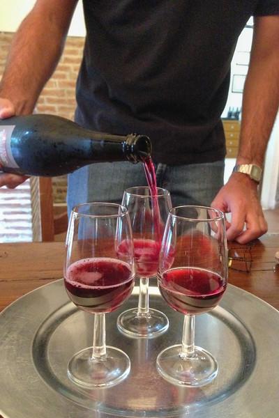 Tasting the Lambrusco di Sorbara made by Garuti Winery