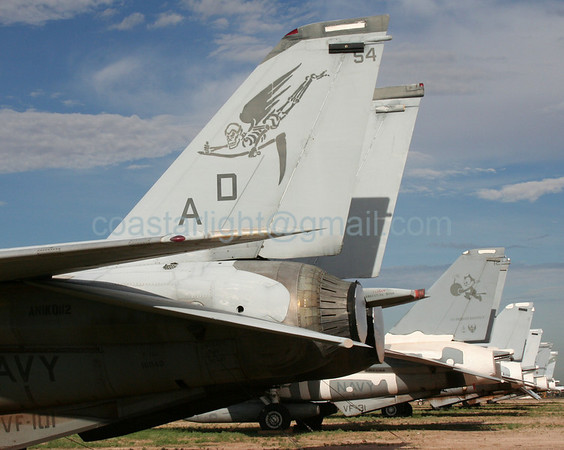 Grumman F-14 Tomcats from VF-101 Grim Reapers (callsign: Gunfighter) and VF-31 Tomcatters (callsign: Tomcat). July 20, 2006. AMARC... the Boneyard near Davis Monthan AFB, Tucson, AZ. © Brandon Lingle