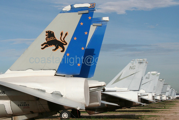 Grumman F-14 Tomcats from VF-213 Black Lions (callsign: Black Lion) and VF-24 Renegades (callsign: Rage). July 20, 2006. AMARC... the Boneyard near Davis Monthan AFB, Tucson, AZ. © Brandon Lingle
