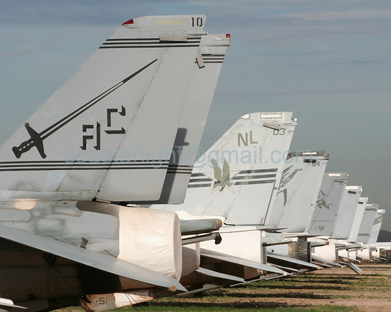 Grumman F-14 Tomcats from VF-32 Swordsmen (callsign: Gypsy) and VF-51 Screaming Eagles (callsign: Eagle). July 20, 2006. AMARC... the Boneyard near Davis Monthan AFB, Tucson, AZ. © Brandon Lingle