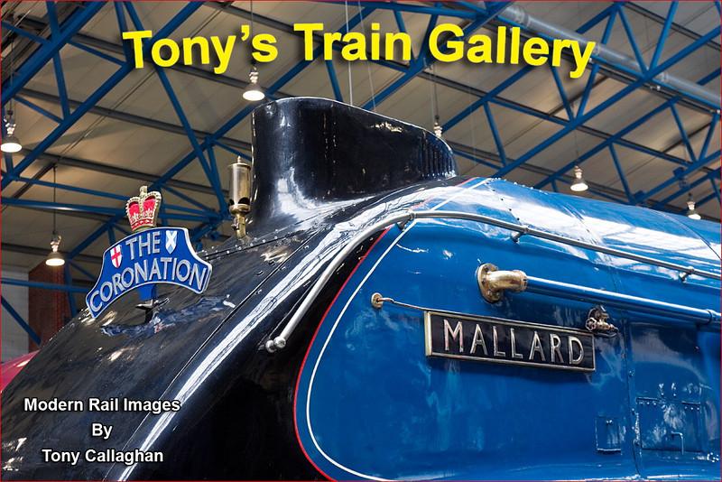 21st Apr 12:  Mallard at York Museum