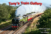 12th Sep 2016:  LNER A1 Pacific 60163 Tornado powering the last Torbay Express of the season is captured at Strap Lane in Upton Noble.  1Z27 left Bristol Temple Meads at 8 am and sd heading for Kingswear