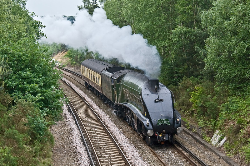 2nd Jun 08:  After her successful tour from Exeter 60019 'Bittern' heads home to the Mid Hants.  Seen here working away from Fox Hills Tunnel