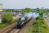 "14th May 08: 60019 ""Bittern"" steams away from Bracknell on a Victoria to Stratford Cathex"