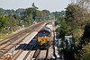 26th Sep 08:  66021 working the morning Hinksey to Eastleigh deptmental. Foliage growth now prevents takig a picture through the palings to the right of the bridge parapet.