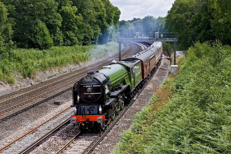 21st Jun 09:  The Fathers Day Cathex from Waterloo looks great as it rounds the curve through Pirbright. Running via Winchester the return will be via the Pompey Direct Line