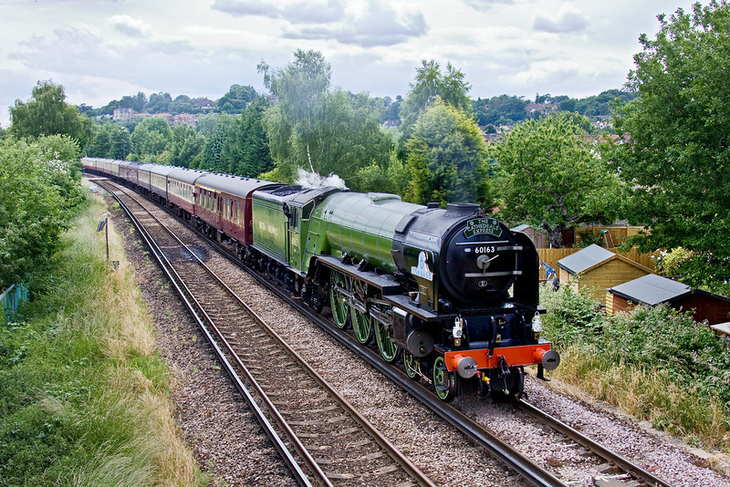 21st Jun 09:  New LNER A1 60163 was rostered for the Fathers Day Cathex from Waterloo and return via Winchester and Petersfield. Captured here leaving Farncombe