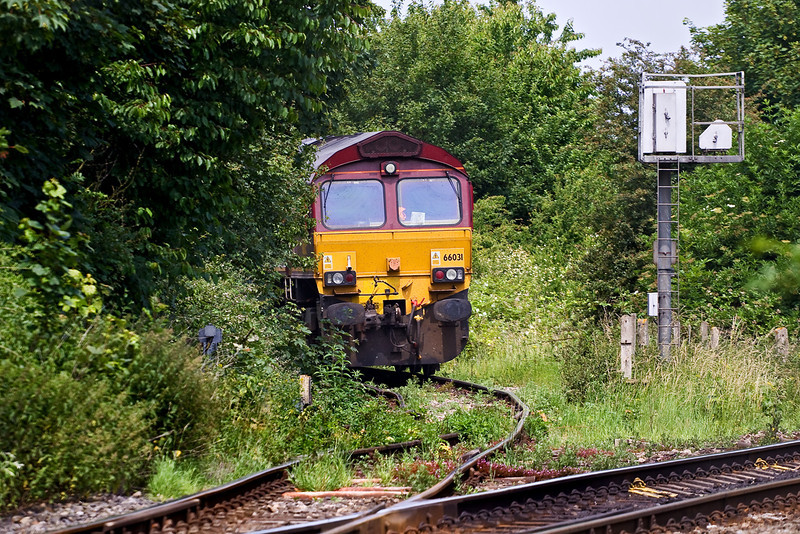 25th Jun 09: 66031 waits at the exit signal from the Appleford land fill site with 6C48 to Whatley.  I now have pictures of all the uk based EWS 66s.