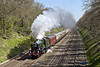 17th Apr 10:  5043 Earl of Mount Edgecumbe charges though the Sonning cutting working  the  non stop run from Paddington to Bristol Temple Meads