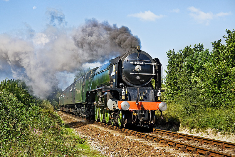 30th Aug 10:  The fireman on Tornado working the 11.00 from Arlesford piles on some coal on the climb to Ropley