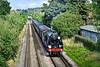 "21st Jul 10:  Working the ""Dorset Coast Express"" again is 30777 ""Sir Lamiel"".  1Z96 is captured here crossing Addlestone Moor in Chertsey"