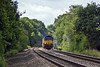 17th Jul 10:  About to run into the shadow at Grazeley is 66017 heading 4M29 Intermodal to Hams Hall from Southampton