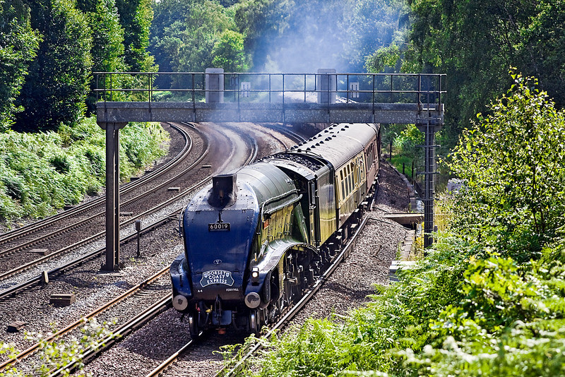 "28th Jul 10:  The ""Dorset Coast Express"" to Weymouth with LNER A4 Pacific 60019 ""Bittern"" in charge rounds the corner at Pirbright"