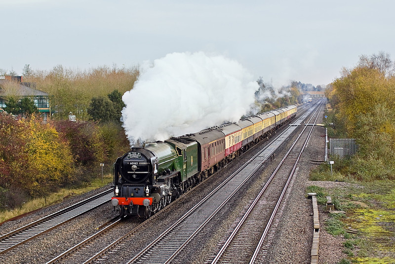 "26th Nov 11:  Passing White Waltham is 60163 ""Tornado"" working 1Z31 the day's Cathex to Shrewsbury from Paddington."