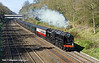 7th Apr 11:  70000 'Britannia' heads through the Sonning Cutting working 1Z71 'The Cathedrals Express' from Oxford to Canterbury West