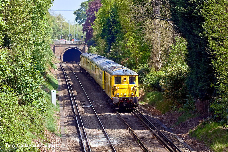 21st Apr 11:  1Q11 TnT by 73138 & 73107 starts the down hill run to Camberley away from the short tunnel under the A30 road.  Pictured from the Gibbet Lane bridge