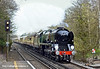 1st Apr 11:  35028 Clan Line heads the Orient Express up the hill through Worplesdon