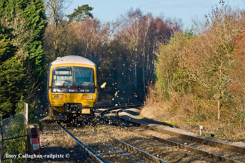 5th Jan 11:   The dried Oak leaves fly up with the passage of 165121 up the hill away from Sandhurst.  2V55 is a fast service to Reading leaving from Shalford at 09.31