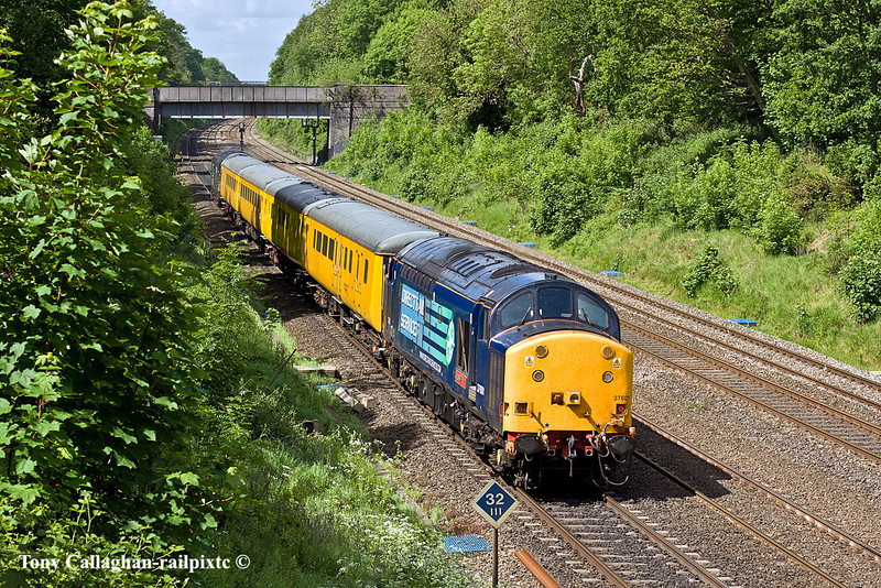 10th May 11:  37601 is on the tail of 1Q13 led by 37607 from Old Oak Common.  Pictured here in the Sonning Common on the Down Main line