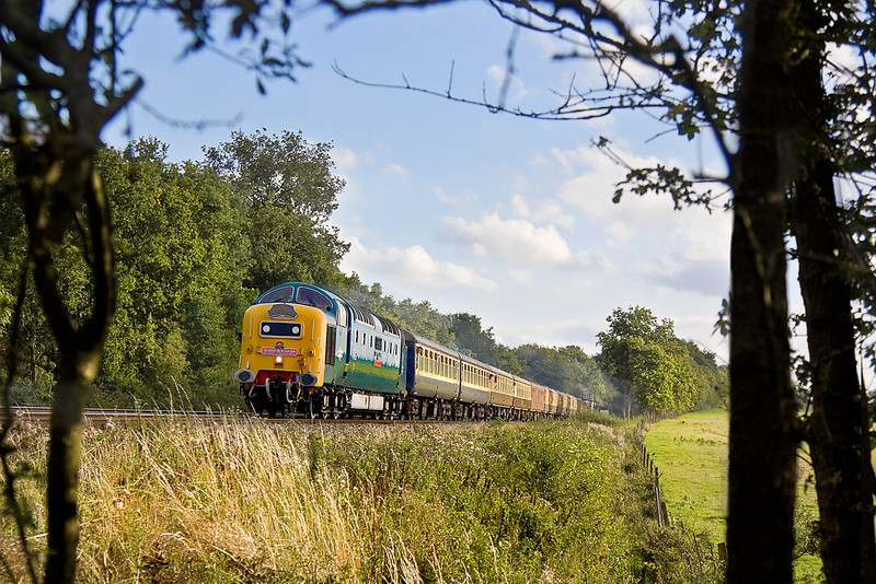 """3rd Sep 11:  Sounding fantastic 55022 """"Royal Scots Grey"""" roars through Grazeley on it's way back to Crewe with """"The Dorset Deltic Explorer"""" after a jaunt to Weymouth"""