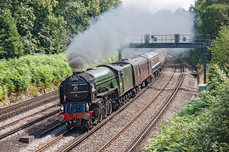 26th Jul 12:  60163 round the curve through Pirbright with the day's Cathedrals Express from Northampton to Eastleigh.  I had not expected this to be on the Fast line.
