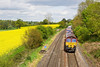 16th May 12:  With the Rape Seed in fulll bloom 66185 rushes through Silchester on 4O30 from Trafford Park to Southampton