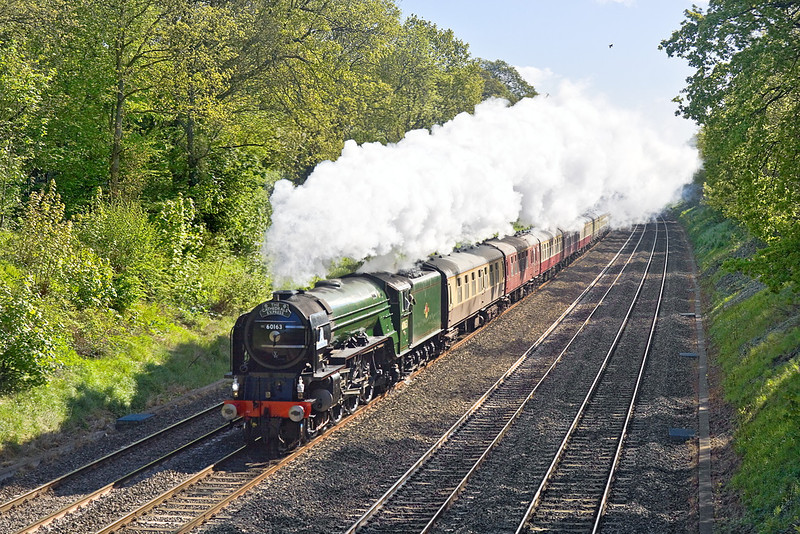 12th May 12:  Accelerating away from the Twyford stop and through the Sonning Cutting is LNER A1 Pacific 60163 'Tornado'.  The Cathedrals Express is running form Paddington to Shrewsbury.