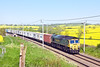 22nd May 12:  Running through a sea of yellow at Chursh Brampton is 66566 on the point of 4L93 from Lawley Sreet to Felixstowe