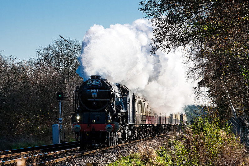 29th Nov 12:  After a water stop at North Camp 60163 'Tornado' makes a magnificent sight as she storms through Blackwater while working 1Z96.  This Cathedrals Express ran from Victoria to Bristol Temple meads via Redhill and the B & H