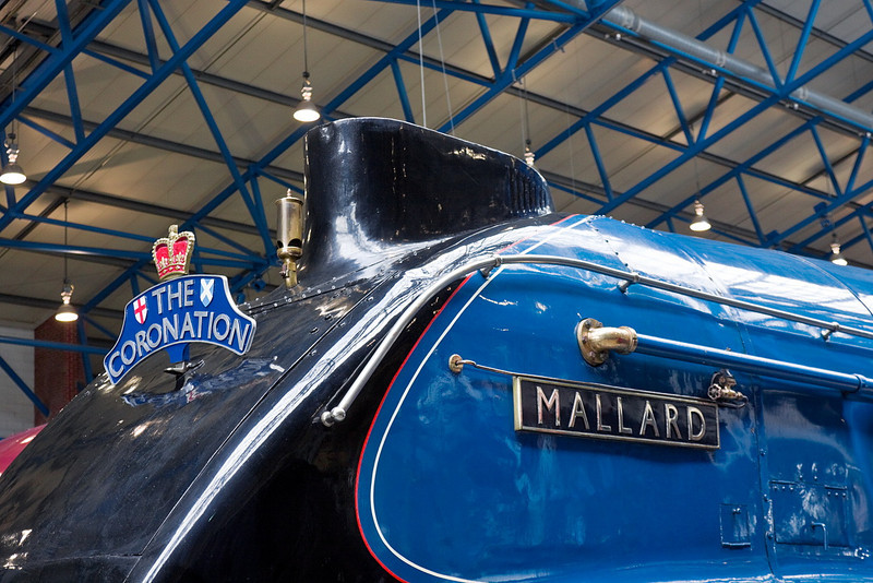 21st Apr 12:  Mallard at York Museum