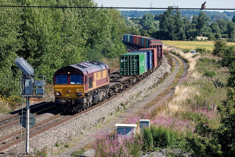 1st Aug 13:  66043 nearing Didcot North Junction with 4O53 from Wakefield Europort to Southampton Western Docks passes a disinterested pigeon.