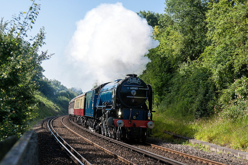 5th Jul 13:   The Cathedrals Express from Lewes to Salisbury is captured from a foot crossing  in Cooksbridge  some 6 minutes into it's journey